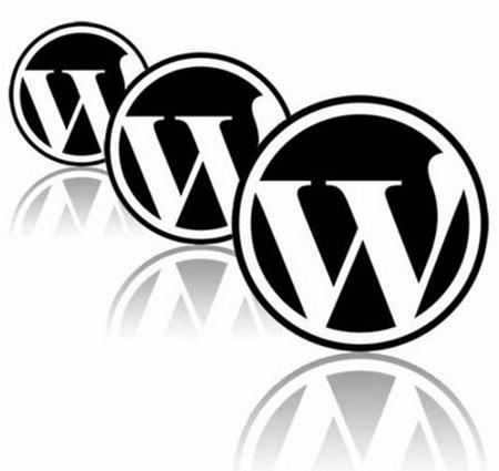 Вывод произвольного текста в любой рубрике wordpress