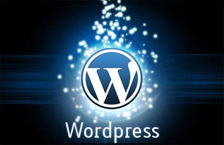 Вывести описание статьи wordpress