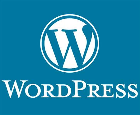 Вывести на главной странице WordPress