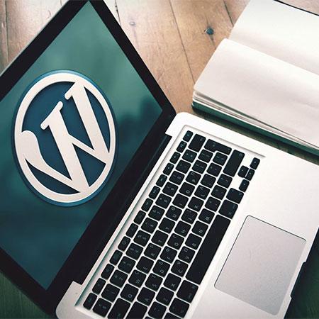 Вывести записи из определенной рубрики — WordPress